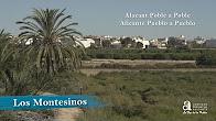 Los Montesinos. Alicante, town by town